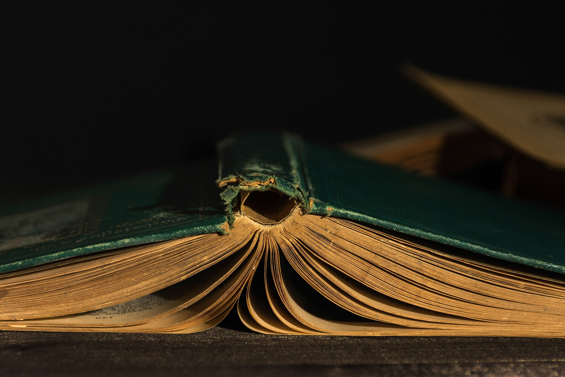 Golden Rule for Authors Using Book Reviews As a Promotion Tool